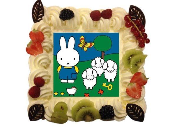 Foto taart vanaf 9 pers.€23,70 Afbeelding kan op elke gewenste taart.